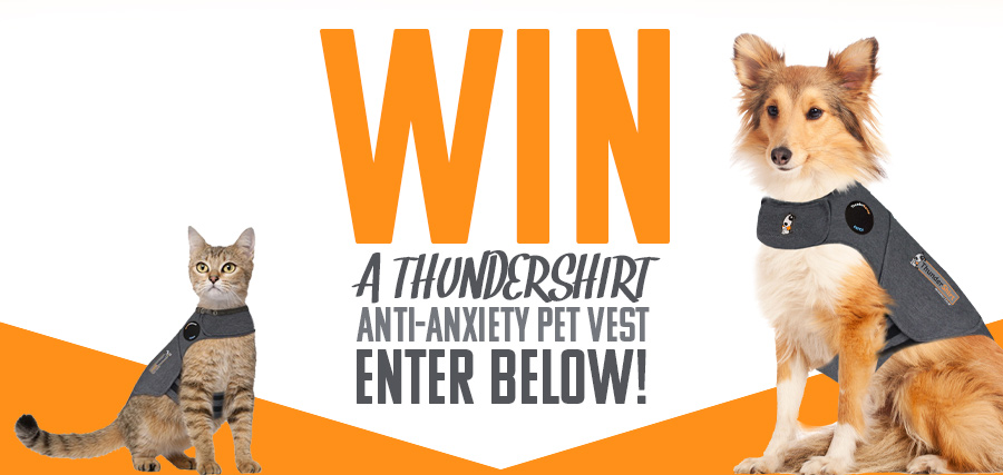 Win A Thundershirt Anti-anxiety Pet Vest!